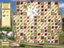 Скриншот №2 для игры Рунные камни